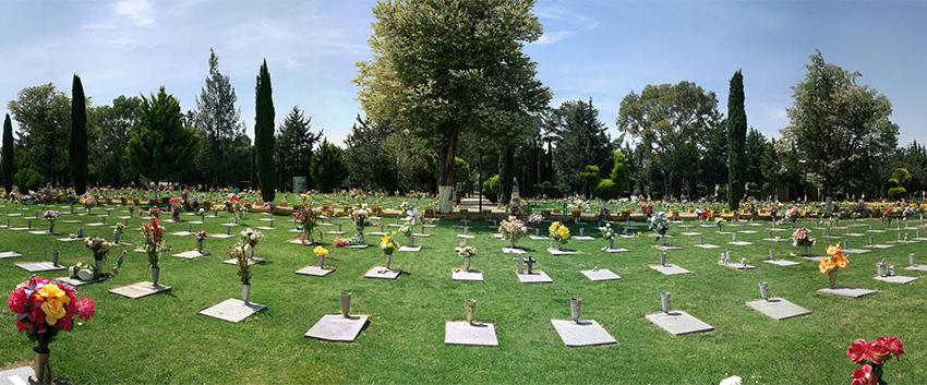 Jardin1 for Los jardines de sansuena